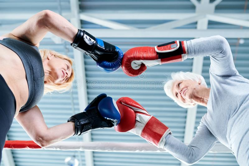 Confrontation. Below view of two tense females in boxing gloves standing opposite one another and touching by hands stock photography