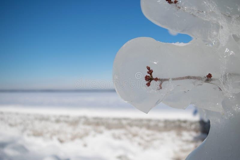Congelado a tiempo fotografía de archivo libre de regalías