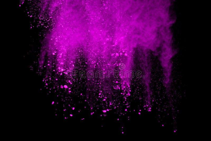 Congeli il moto di polvere porpora che esplode sul fondo nero fotografia stock libera da diritti