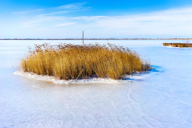 congelou a lagoa Kalochori em Grécia fotografia de stock royalty free