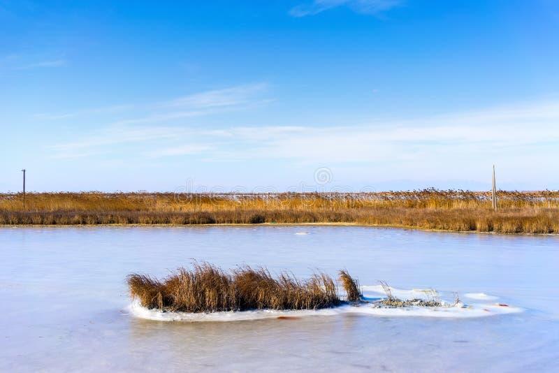 congelou a lagoa Kalochori em Grécia fotografia de stock