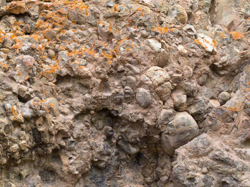 Conglomerate of sedimentary deposit plus lichens stock photography