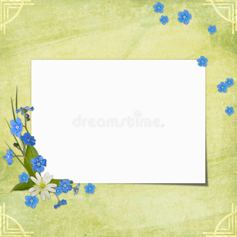 Download Congratulations Card stock illustration. Image of green - 14158084