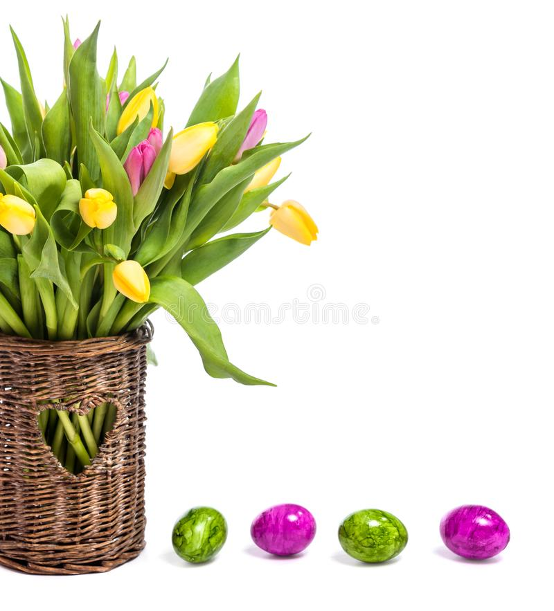 Congratulations on Easter. Tulips in a vase and easter eggs. Isolate on white background royalty free stock photo