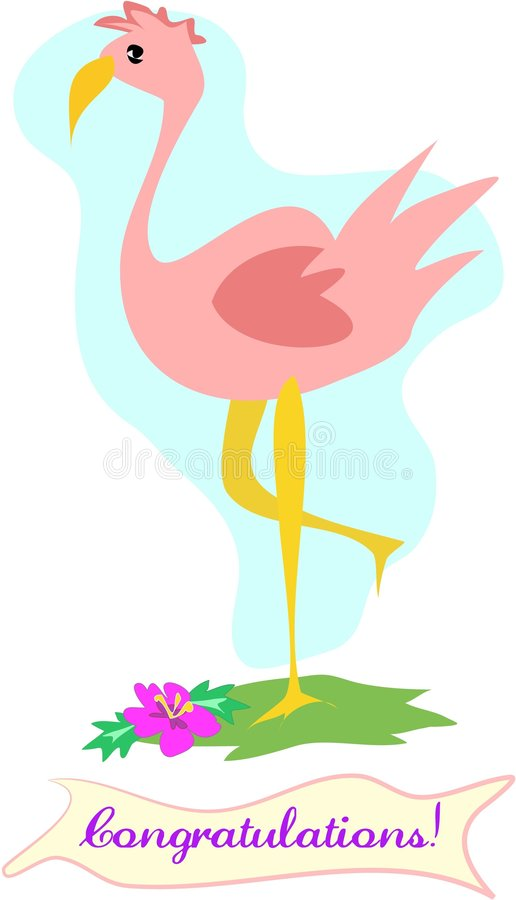 Download Congratulations Flamingo stock illustration. Illustration of congratulations - 6781032