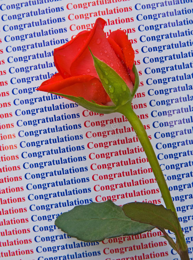 Download Congratulations On Your Success. Stock Image - Image: 12732753