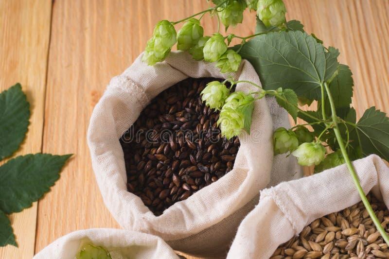 Coni del luppolo e del caramello pallido, malto del cioccolato in borse su woode fotografia stock libera da diritti