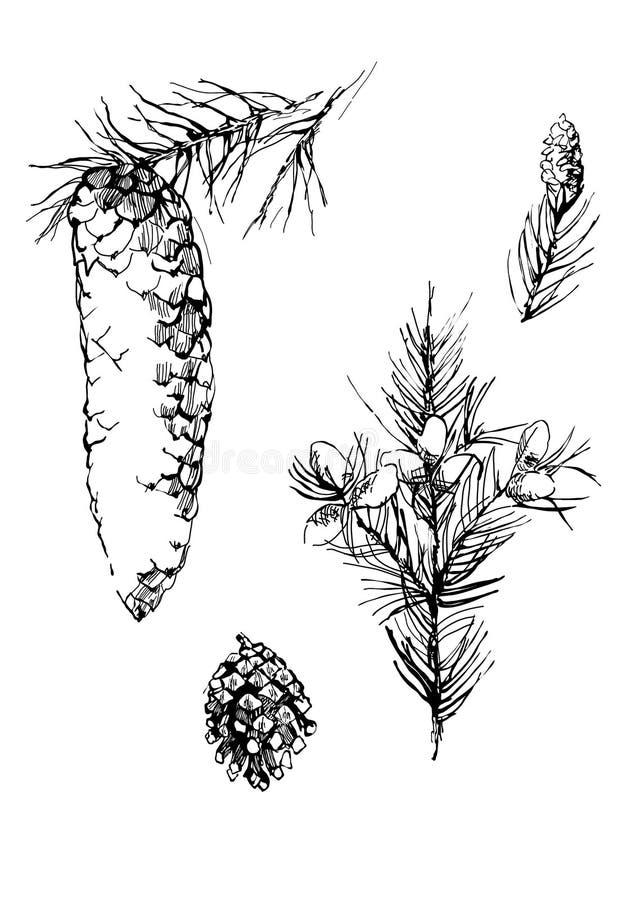 Coni dell'illustrazione della penna royalty illustrazione gratis