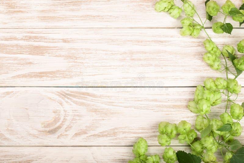 Coni di luppolo verdi freschi su fondo di legno bianco Ingrediente per produzione della birra Vista superiore con lo spazio della fotografia stock libera da diritti