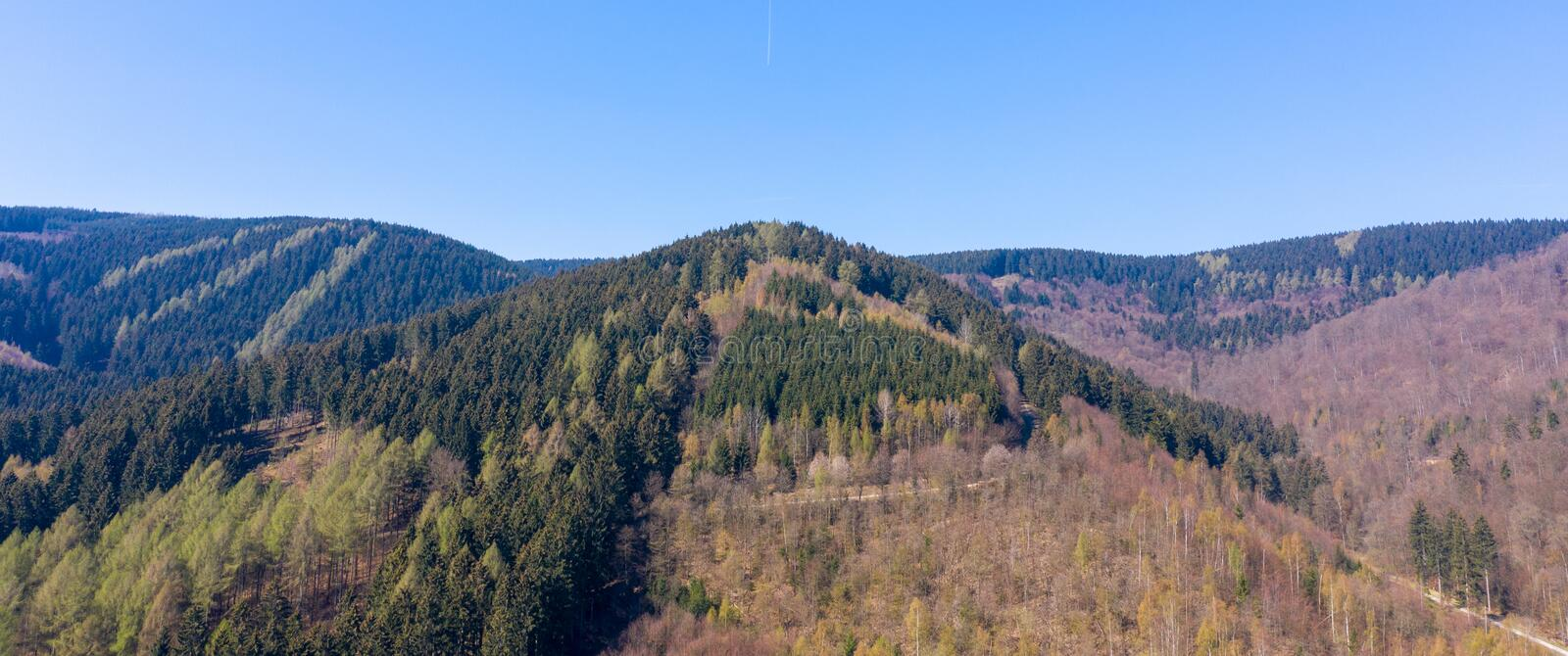 Conical mountain in the Harz Mountains covered with mixed forest. Nature stock image