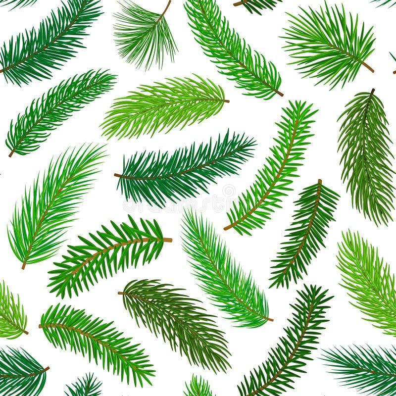 Conifer wiecznozielona sosnowa jedlinowa cedrowa igła rozgałęzia się gałązka bezszwowego wzór ilustracji