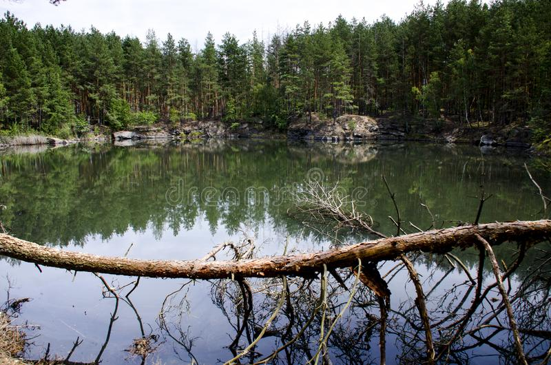 Coniferous forest is reflected in a lake with granite shores royalty free stock photo