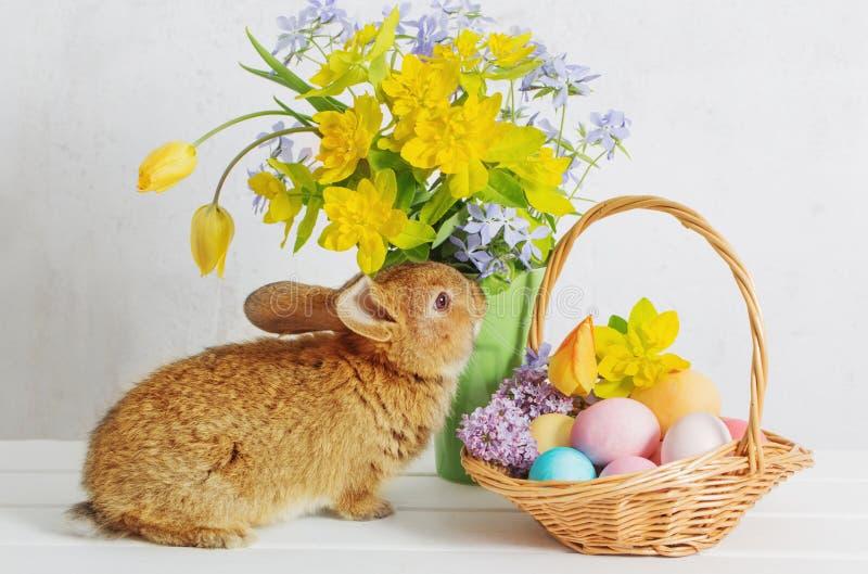 coniglietto con le uova di Pasqua ed i fiori fotografia stock libera da diritti