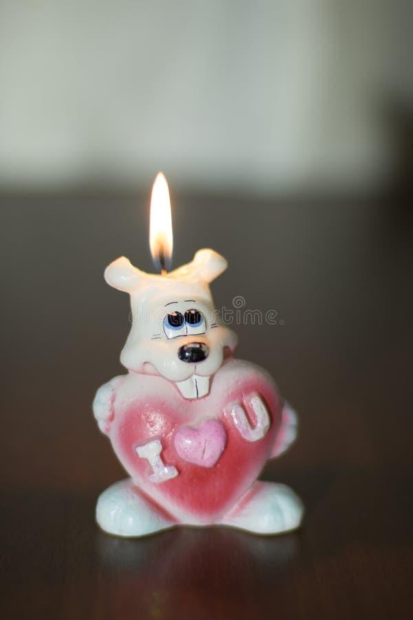 Coniglietto con un cuore fotografia stock libera da diritti