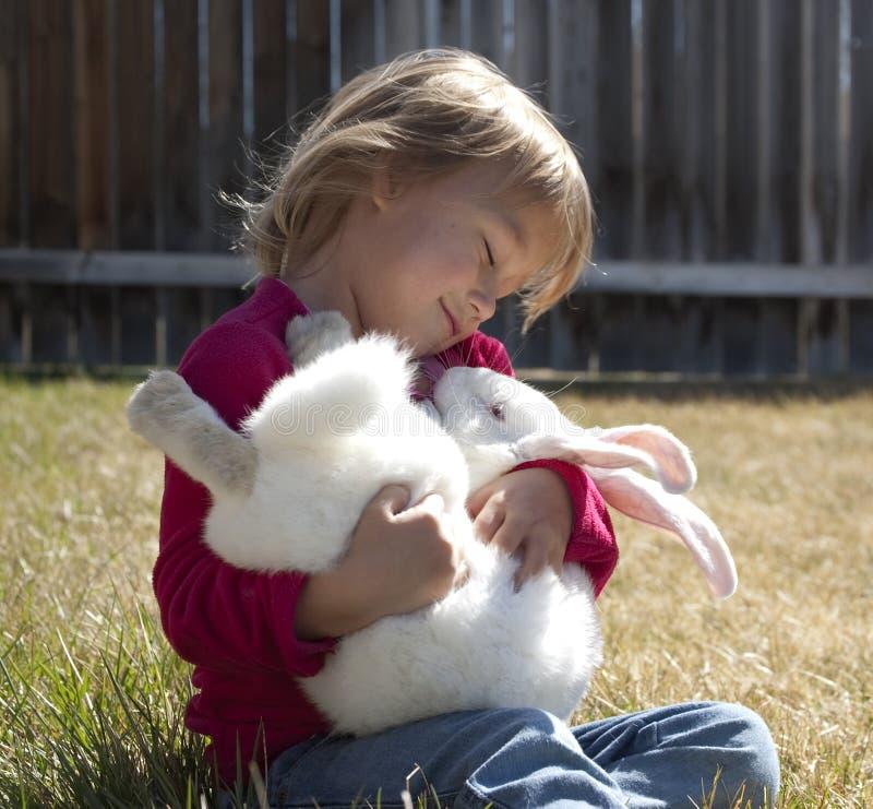 Coniglietto del bambino immagini stock