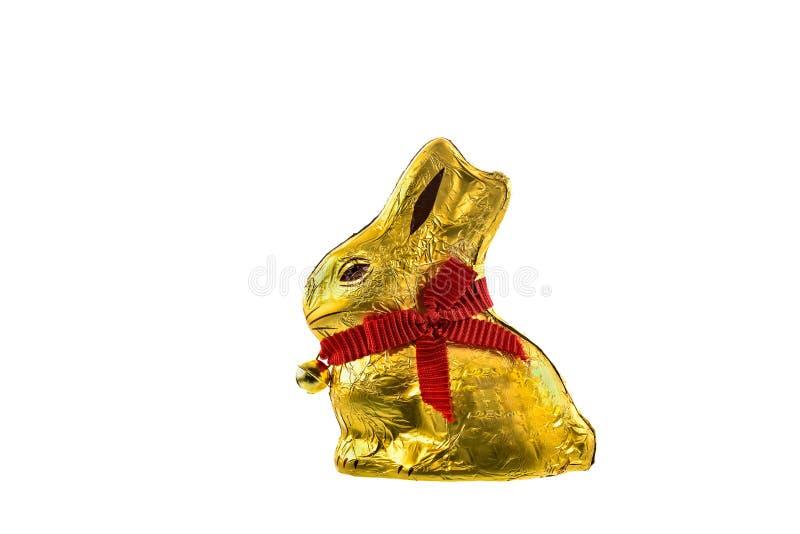 Download Coniglietto Del Cioccolato Isolato Su Priorità Bassa Bianca Immagine Stock - Immagine di celebrazione, animale: 55362395
