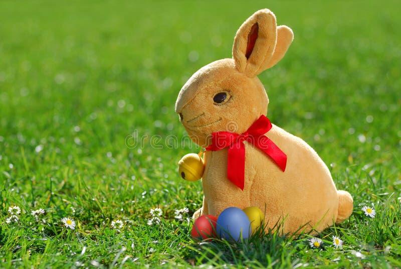 Coniglietto di pasqua con eggs_2 immagine stock libera da diritti