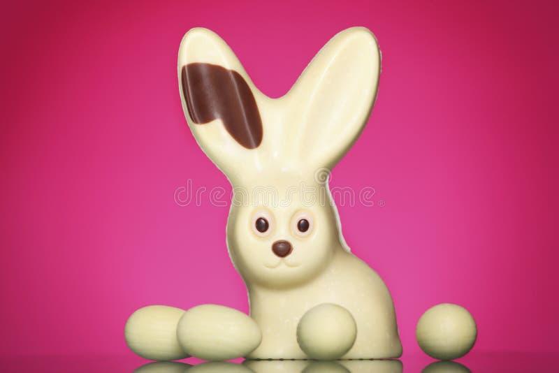 Coniglietto di pasqua del cioccolato immagine stock