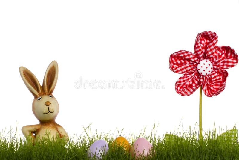 Coniglietto di pasqua dietro erba con il fiore del drapery e