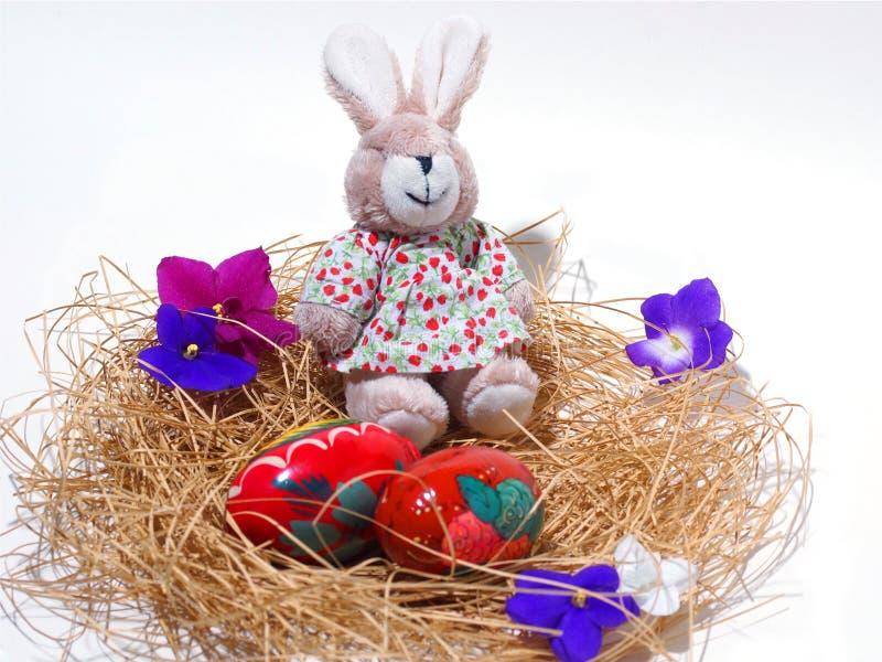 Coniglietto ed uova di pasqua in nido, isolato su fondo bianco fotografia stock