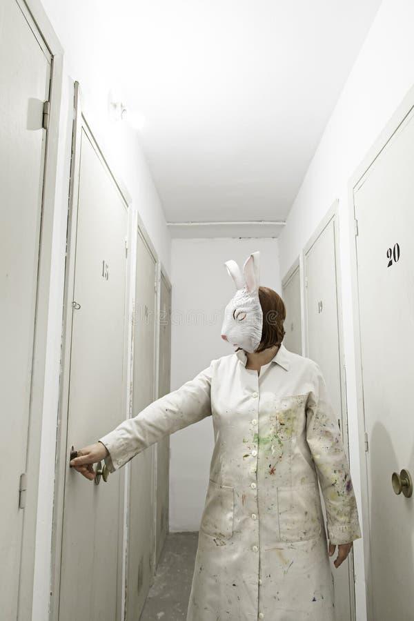 Coniglio in porta fotografia stock libera da diritti