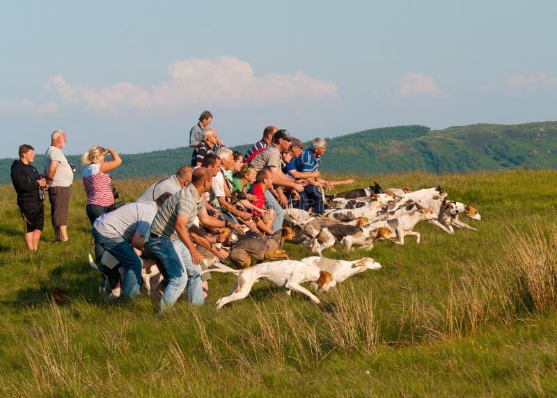 Coniston Hound Trail slip royalty free stock image