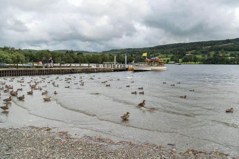 CONISTON WATER, MEER DISTRICT/ENGLAND - 21 AUGUSTUS: Motorlancering stock afbeeldingen