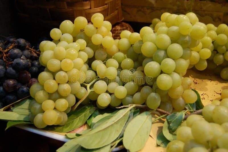 Conjunto da uva branca fotografia de stock royalty free