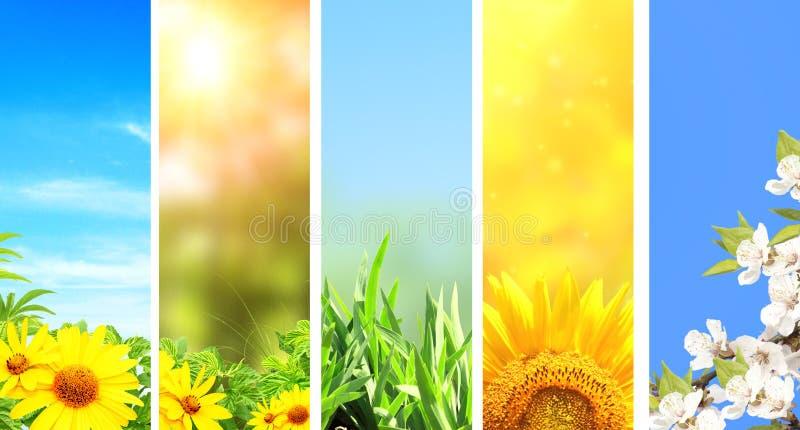 Conjunto de banderas de la primavera imagen de archivo libre de regalías