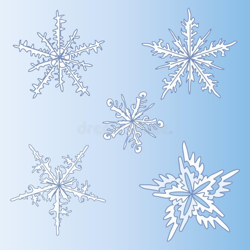 Conjunto de copos de nieve decorativos Modelo del invierno exotica Moda en un ejemplo del vector stock de ilustración