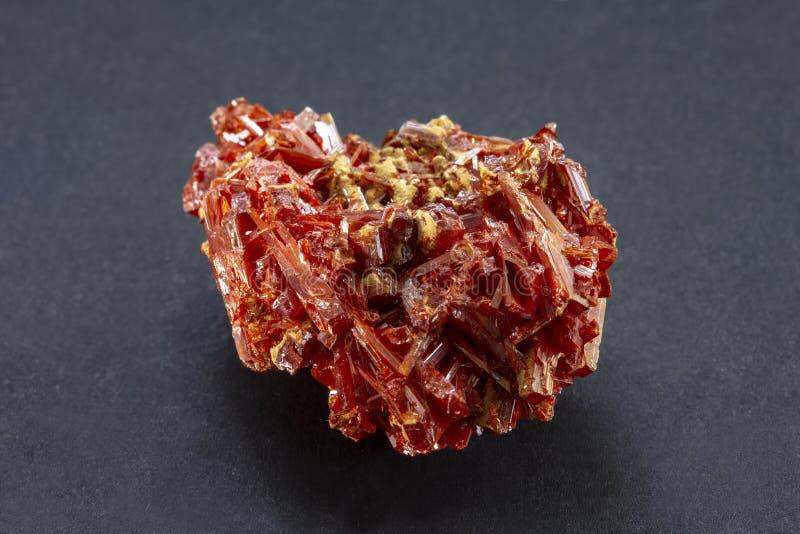 Conjunto de Crocoite de cristais vermelhos de Tasmânia imagens de stock royalty free