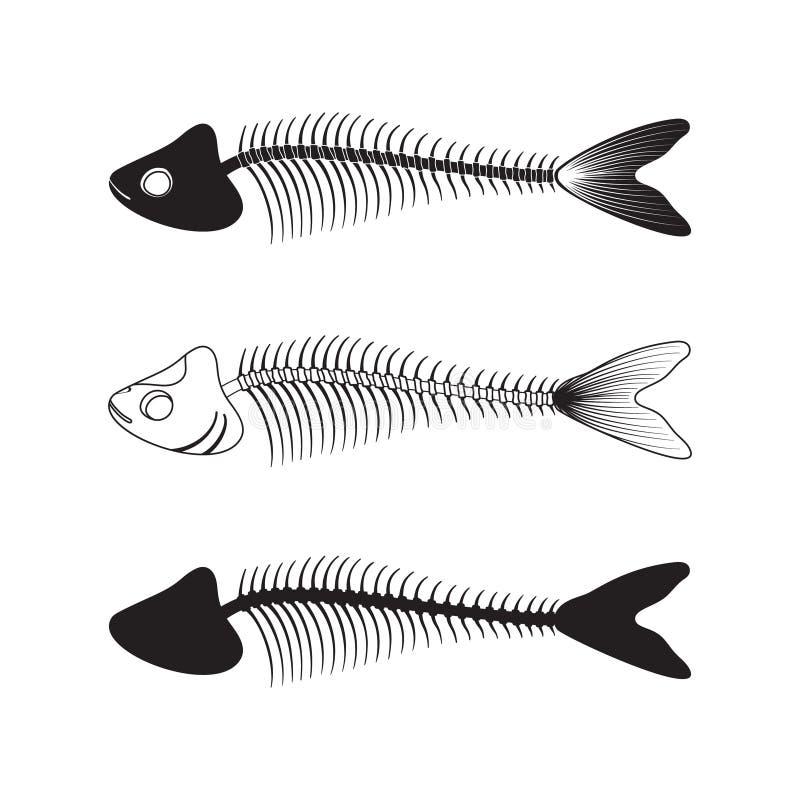 Conjunto de esqueletos de los pescados Silueta tallada Ejemplo del hueso, de la anatomía, de la comida y de las sobras Icono del  libre illustration