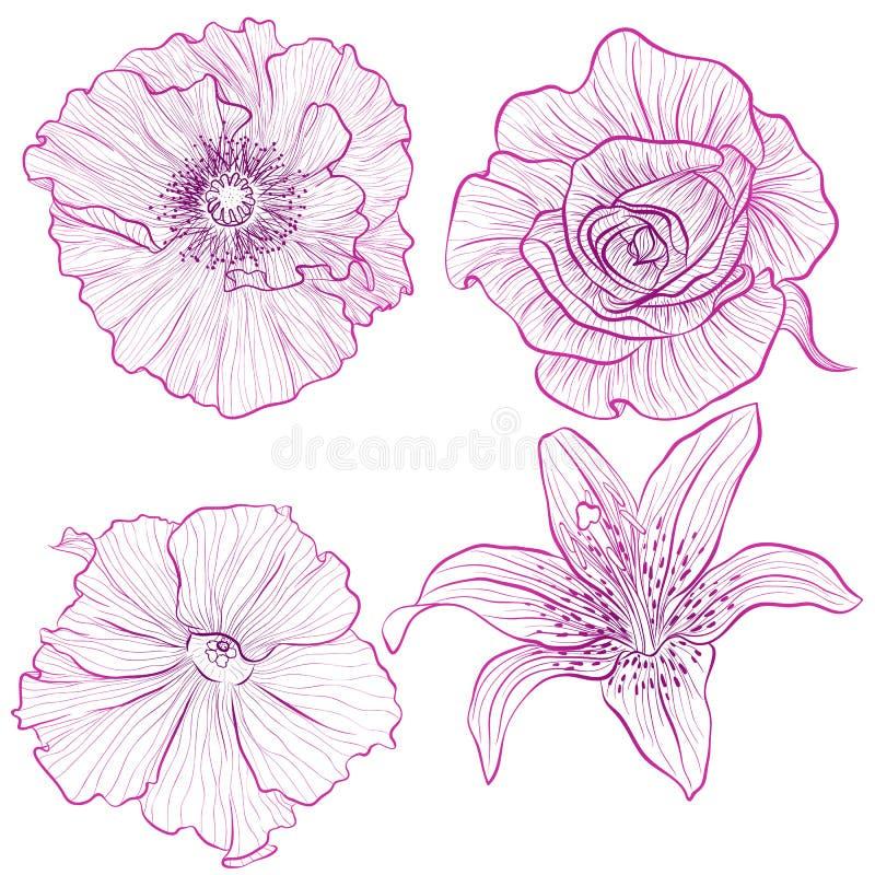 Conjunto de flores stock de ilustración