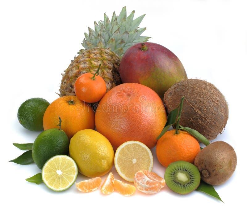 Conjunto de fruta cítrica y de frutas tropicales imagenes de archivo