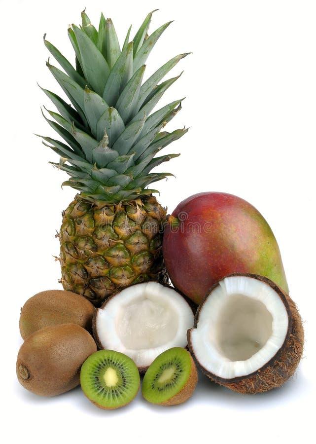 Conjunto de frutas tropicales imágenes de archivo libres de regalías