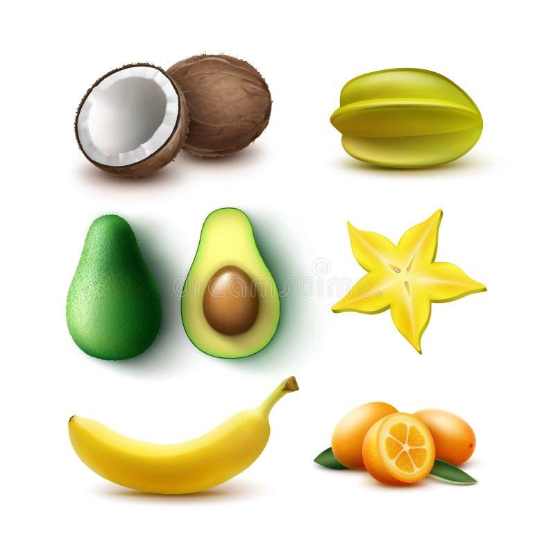 Conjunto de frutas tropicales libre illustration
