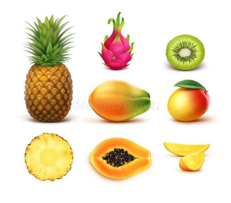 Conjunto de frutas tropicales stock de ilustración