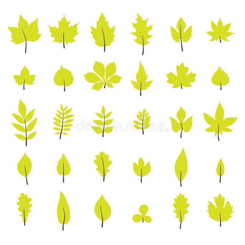 Conjunto de hojas de otoño Colección de la hoja en estilo plano stock de ilustración