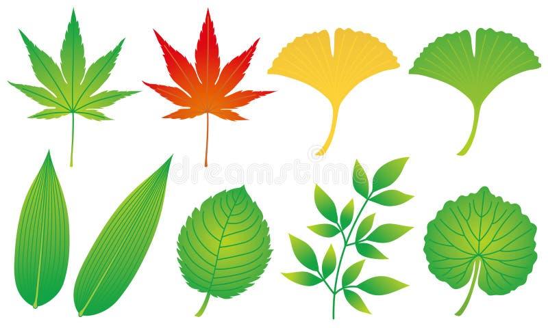 Conjunto de hojas Guarnición japonesa de la comida libre illustration