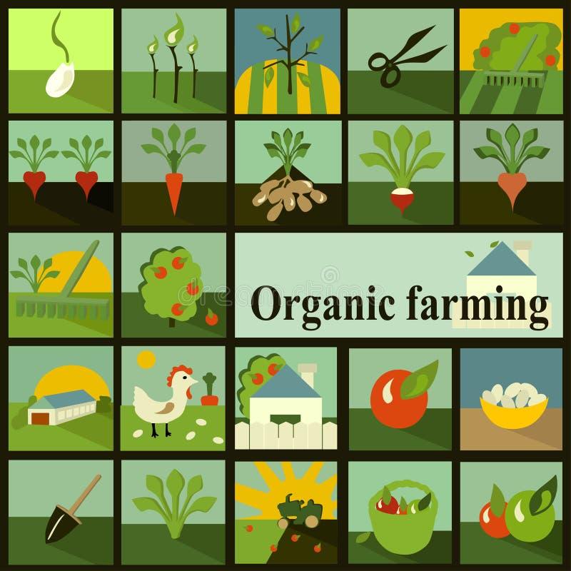 Conjunto de iconos Agricultura biológica stock de ilustración