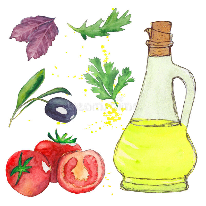 Conjunto de la ensalada Botella del aceite de oliva, hoja de la albahaca, aceituna, arugula, perejil, tomate libre illustration
