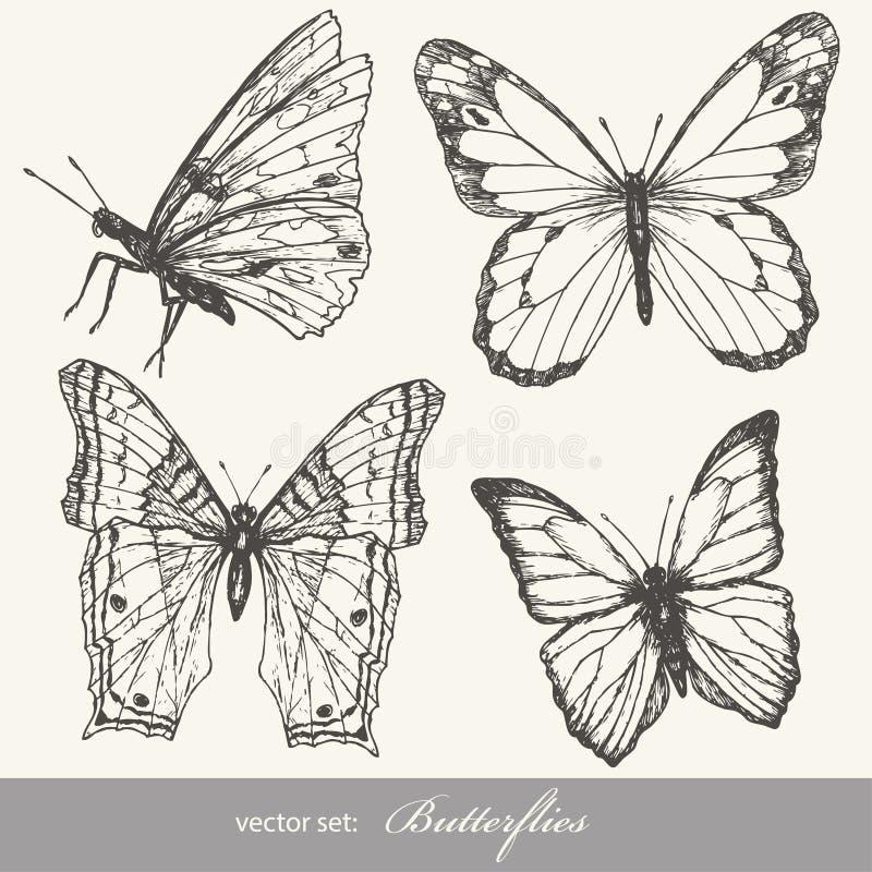 Conjunto de la mariposa ilustración del vector