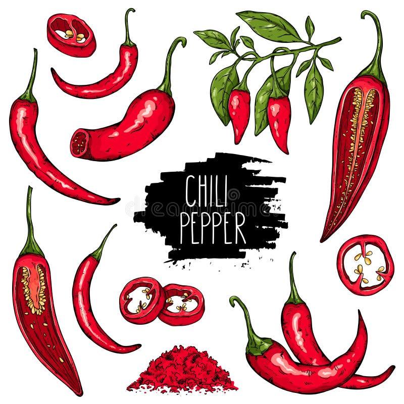 Conjunto de la pimienta de chile stock de ilustración