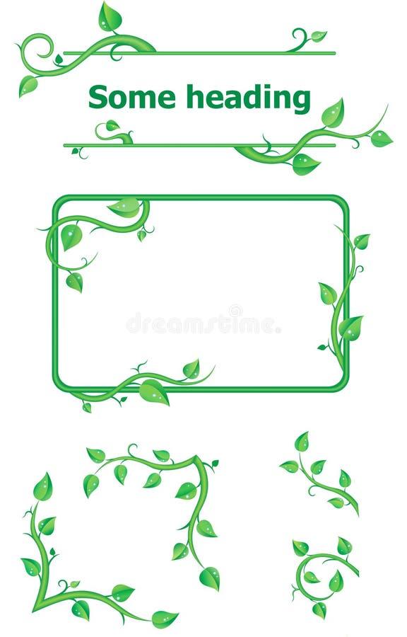 Conjunto de los elementos frescos de la planta para el diseño foto de archivo