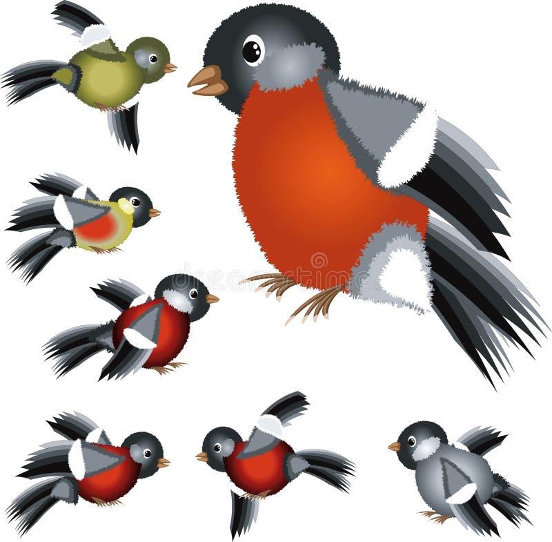 Conjunto de los pájaros stock de ilustración