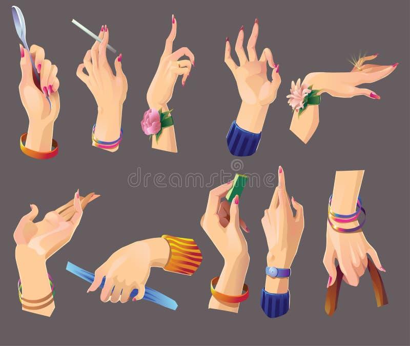 Conjunto de manos femeninas hermosas stock de ilustración