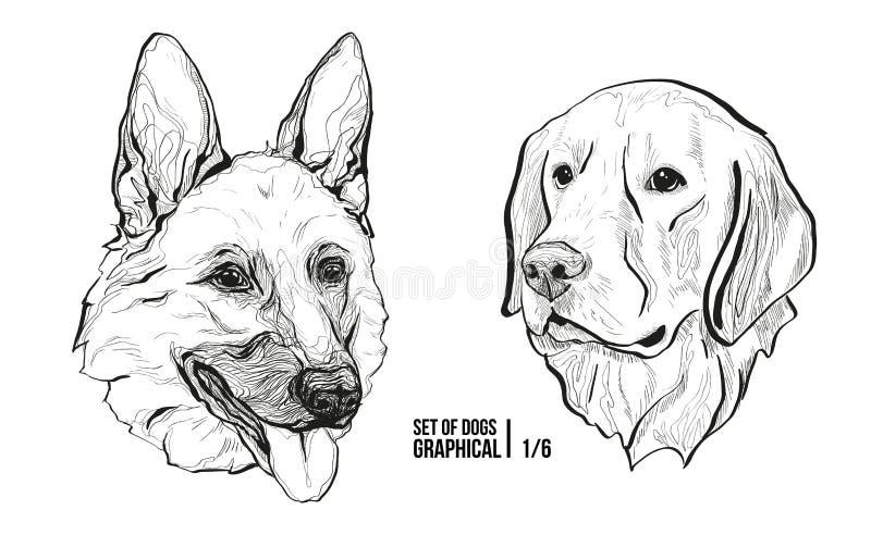 Conjunto de perros Pastor alemán y Labrador de las razas Ejemplo gráfico del vector stock de ilustración