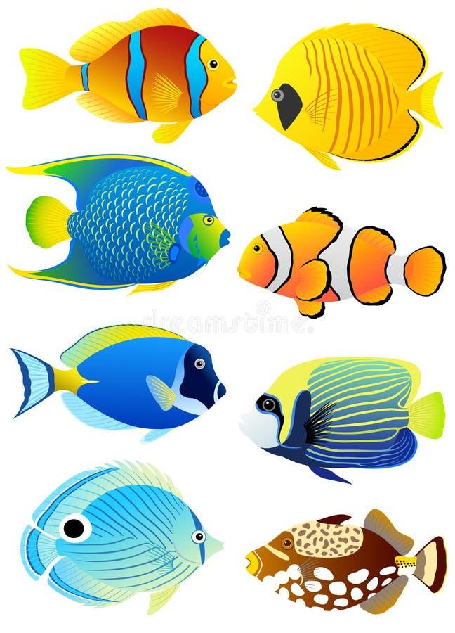 Conjunto de pescados tropicales stock de ilustración