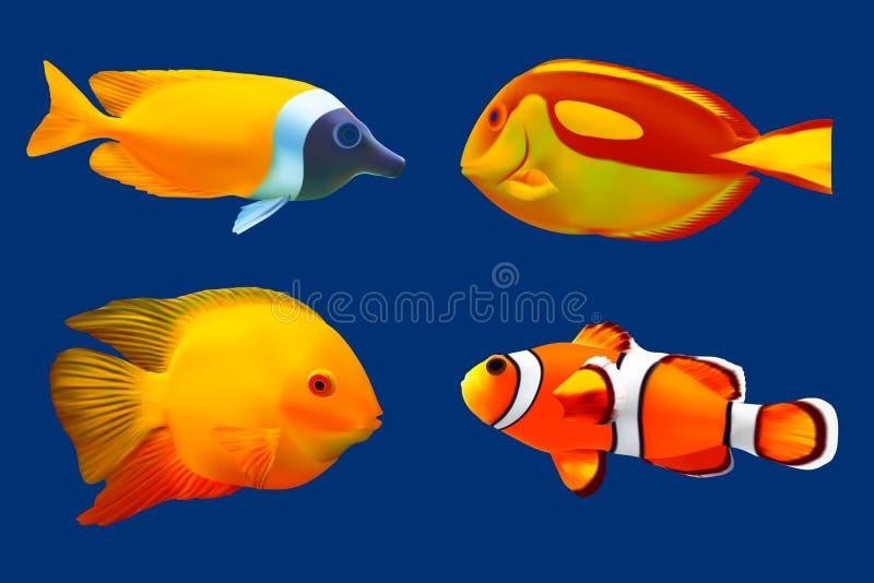 Conjunto de pescados tropicales ilustración del vector