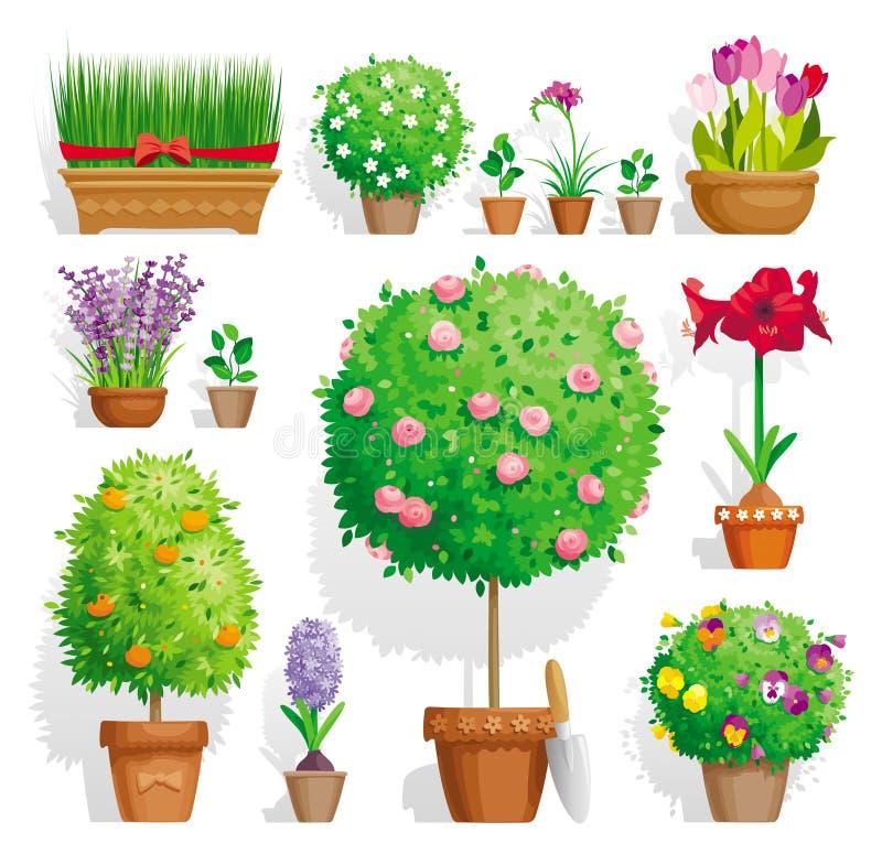 Conjunto de plantas de tiesto stock de ilustración